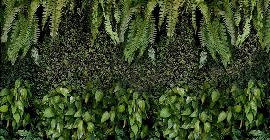 jardim vertical urbano:Jardim Vertical – Blog BRCondos