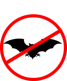 home-servicos-morcegos